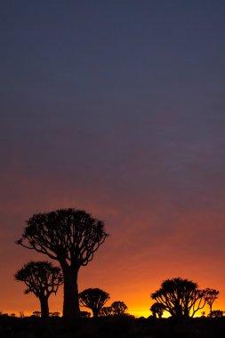 Savanna at sunset stock vector