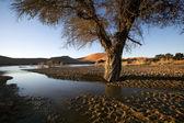 Fotografie Landschaft von Sossusvlei, Namibia