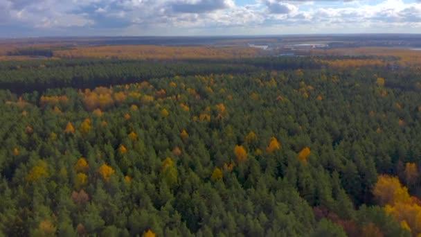 Légi felvétel. Nyitó panoráma az erdőre és a távolban lévő épületekre a felhős ég hátterében. A kamera felmegy.