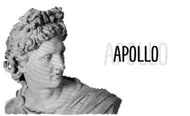 Apollo head antique sculpture engraving sketch