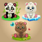 Fotografia Tre orsi del fumetto