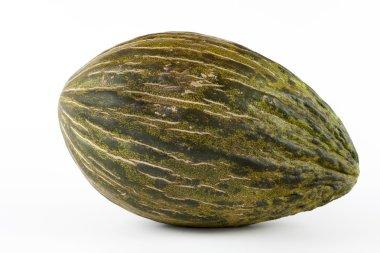 Whole single Piel de sapo melon on white background