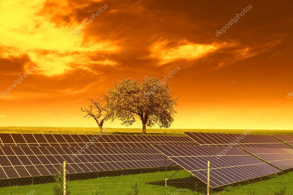 Pannelli solari prima di alberi e cielo di tramonto foto for Immagini pannello solare