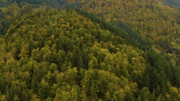 Letecký pohled na stromy, kopce a hory na podzim, pád v černém lese v Německu za oblačného dne.