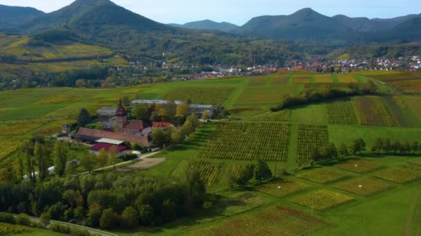 Aerial view of vineyards, houses around the village Burrweiler and Frankweiler in the Pfalz in Germany. On a sunny day in Autumn, fall.