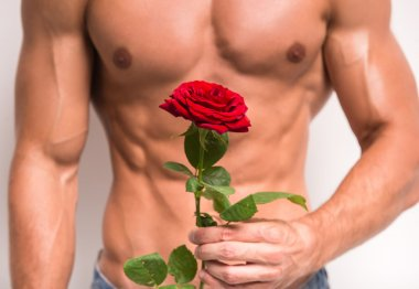 Close-up of young muscular man with perfect torso holding single rose while standing against white background. stock vector
