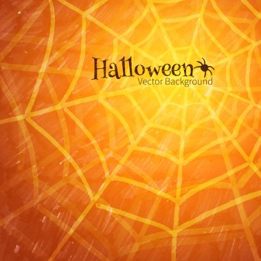 Halloween background with spider web
