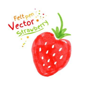 Felt pen drawing of strawberry.