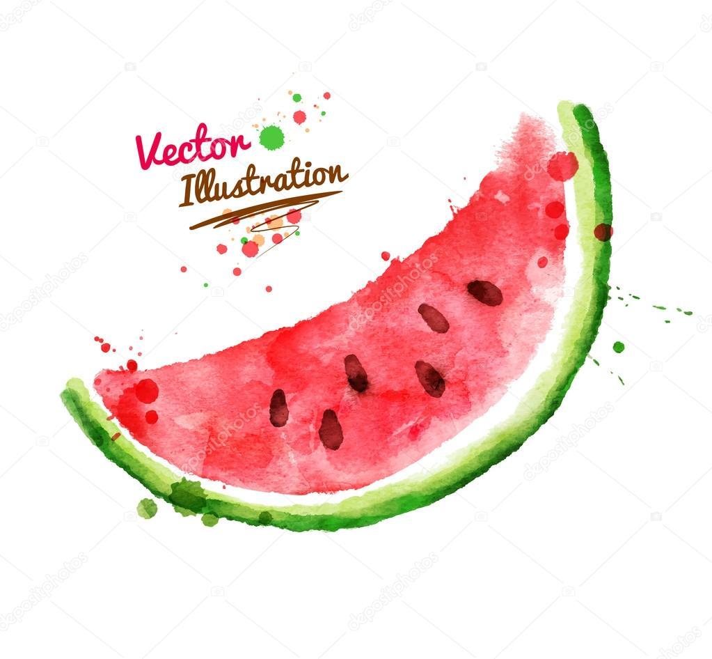 Hand drawn watermelon.