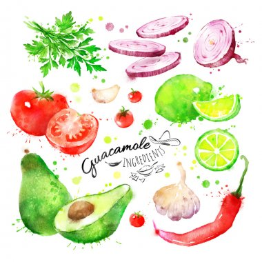 drawn Guacamole ingredients.