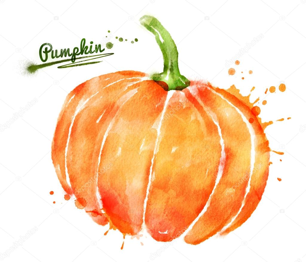 gezeichnete aquarell k u00fcrbis stockfoto  u00a9 sonya halloween pumpkin clipart outline halloween pumpkin clipart outline