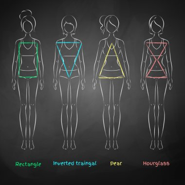 Chalked female body types