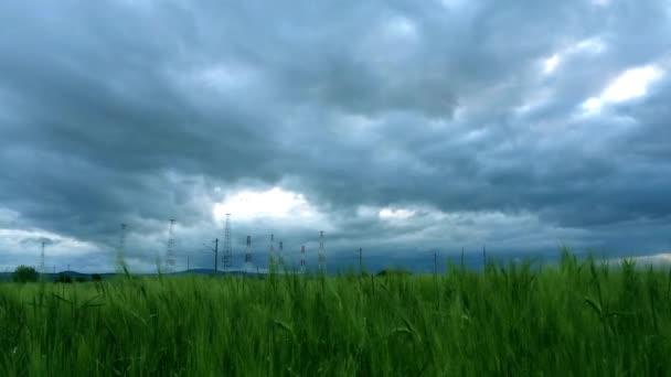 Zelená pole a zamračená obloha