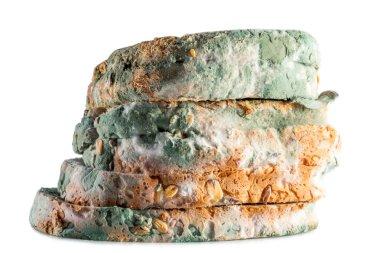 moldy bread whole grain