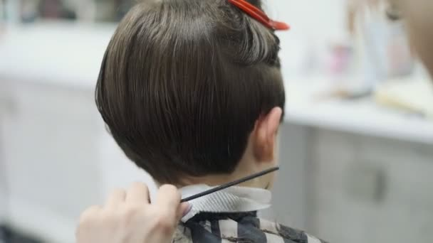 Haircut of a child in a hairdressing salon. Professional haircut for children in the barbershop.