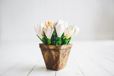 Beautiful white flowers in pot on wooden background