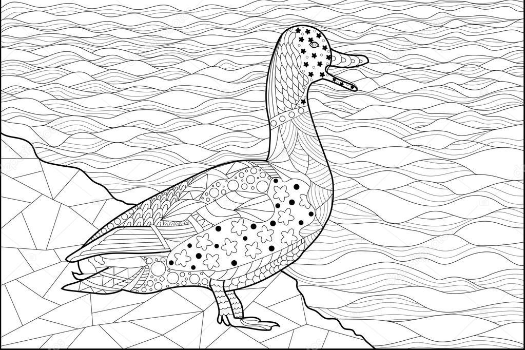 Imágenes: un pato nadando para colorear | pato en la orilla del río ...