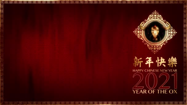 Šťastný čínský lunární rok 2021 roku vola, smyčka 3D animace s kopírovacím prostorem vola zvěrokruhu, kaligrafie a asijských prvků se slavnostním zázemím. (Čínský překlad: Šťastný nový rok)