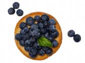 Draufsicht auf goldgerösteten runden Zwieback-Toast aka beschuit mit Blaubeeren oben und seitlich. Isoliert auf weißem Hintergrund.