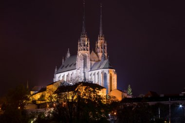 Night picture of the Cathedral of St. Peter and Paul, Brno