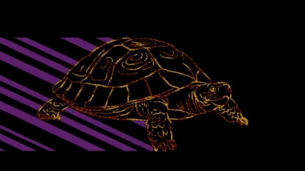 Lustige Tiere, Schildkröte. Neonlicht. Gestaltung von Werbebannern und Webseiten. Ein leuchtendes Zeichen.