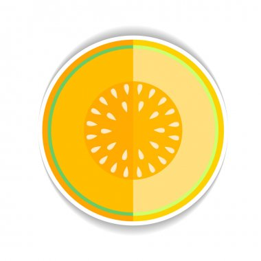 Vector icon Ripe yellow melon and a piece just on a white backgr
