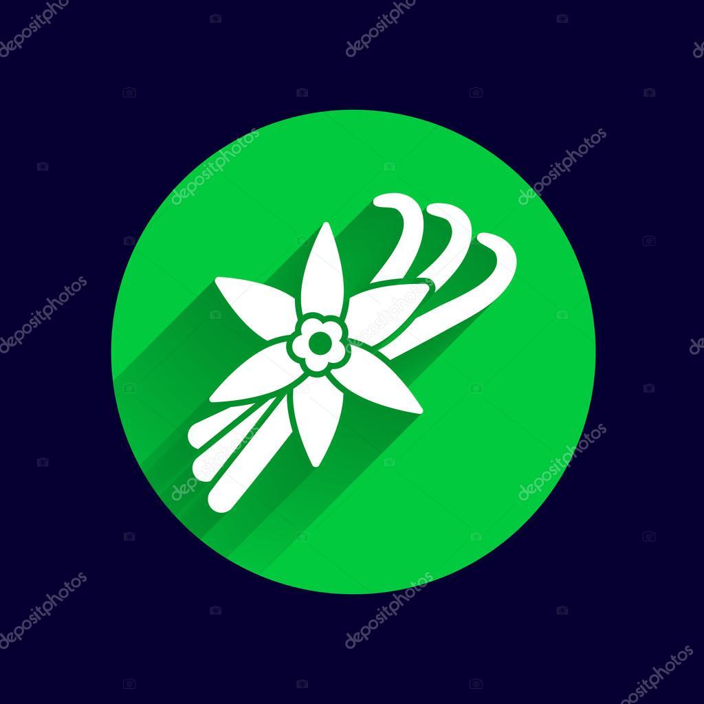 Vanilla flower and vanilla pods Vector Logo