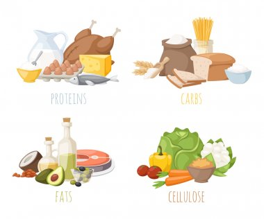 Healthy nutrition, proteins fats carbohydrates balanced diet, cooking, culinary and food concept vector.