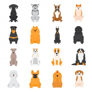 Vector illustration of different dogs breed isolated on white background.