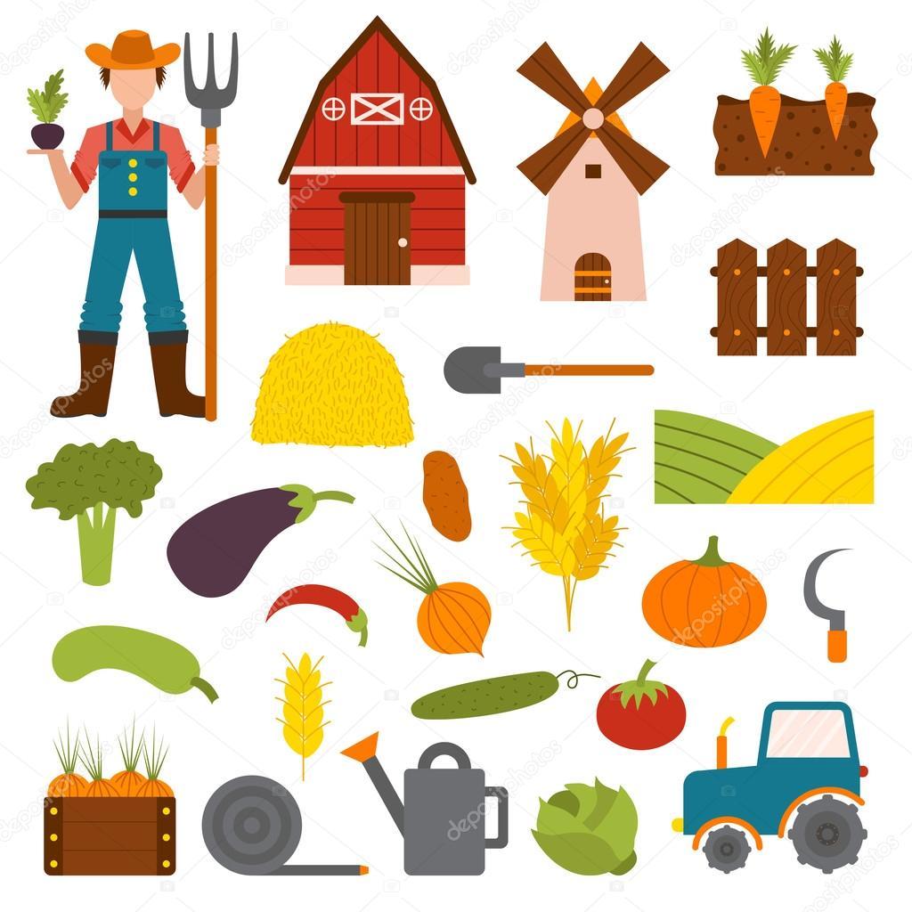 Vegetables farm vector illustration.