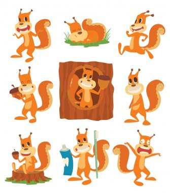 Squirrel vector set.