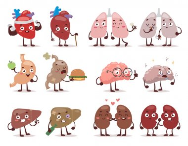 Human organs characters vector illustration.