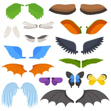 Wings isolated vector illustration.