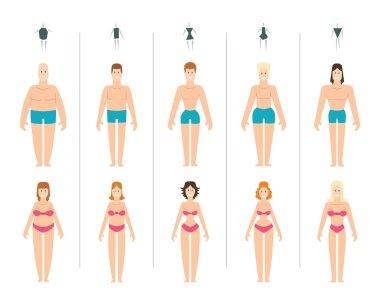 Female body types vector illustration.