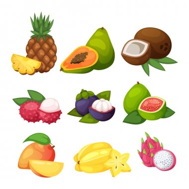 Tropical fruits vector set.