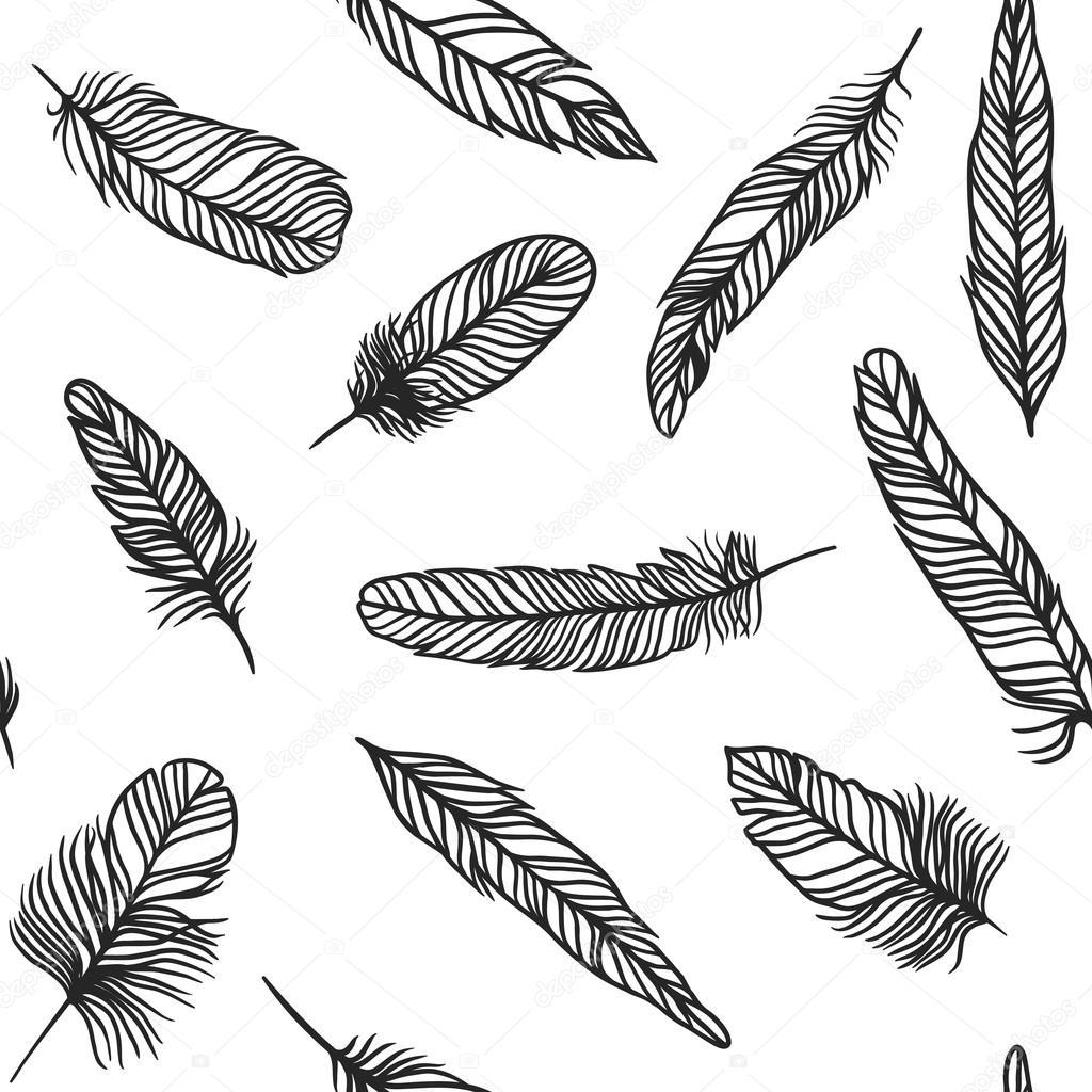 Mano de pluma Boho dibujado ilustración de efecto vector estilo de ...