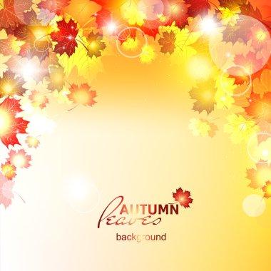 Design autumn vector frame.
