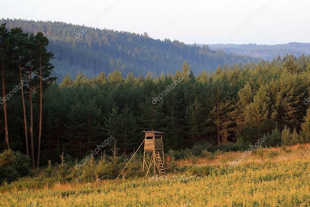 Rig for hunting wild boar and ROE deer on the forest background in the Czech Republic