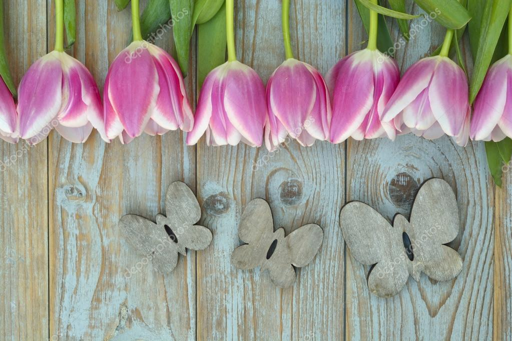 Old grey blue wooden background with pink white tulips border in a row  and empty copy space with wooden spring summer butterflies decoration