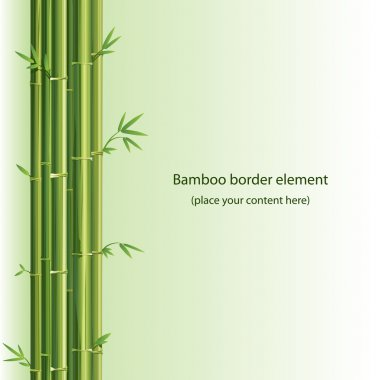 Bamboo vector design element