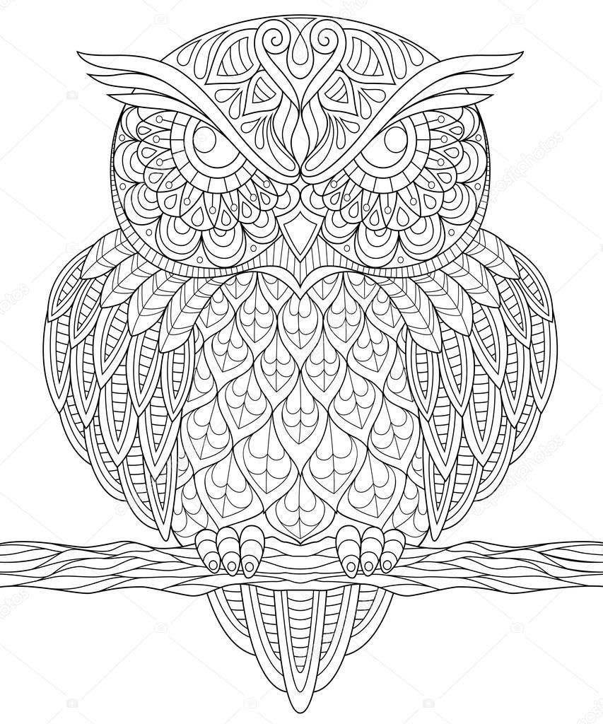 Kleurplaat Owl Uil Volwassen Antistress Kleurplaat Stockvector