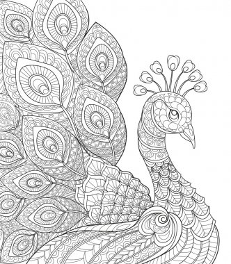 Peacock. Adult antistress coloring page