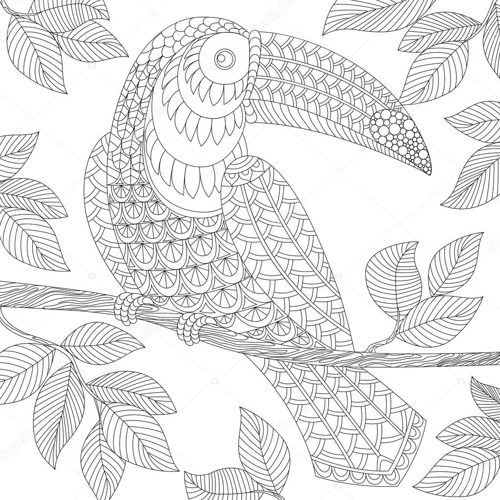 Toucan. Adult antistress coloring page.