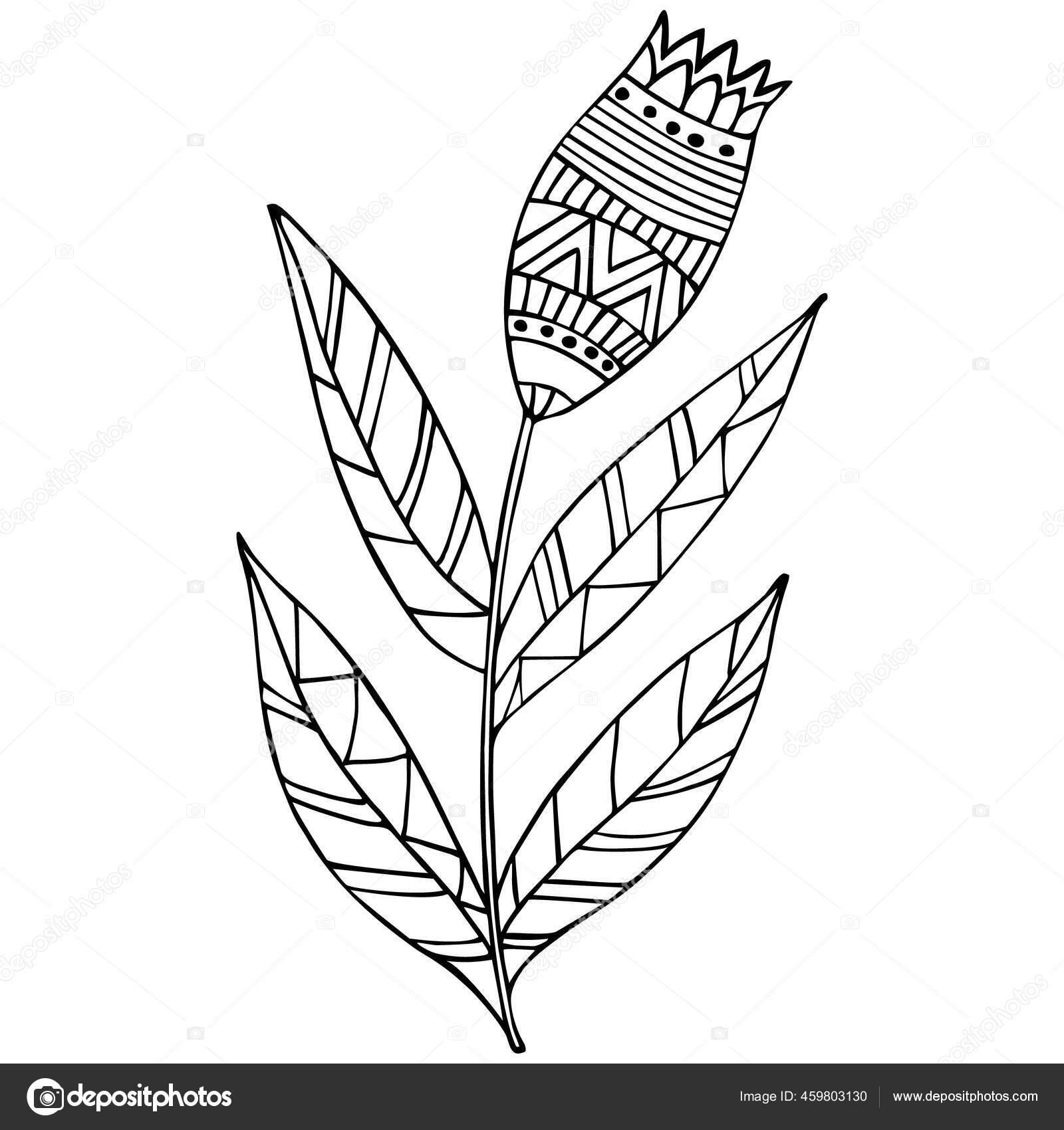 Bunga Dekoratif Seni Baris Halaman Mewarnai Buku Mewarnai Untuk Anak Stok Vektor C Eridanka 459803130