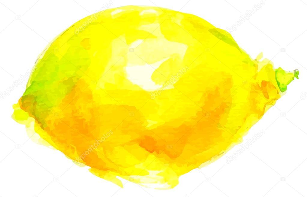 水彩レモン イラスト ストックベクター Eokotnikova 71070047