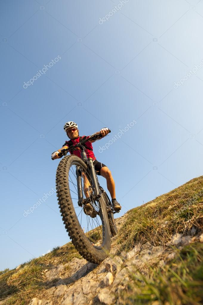 look at the tire - mountainbike wheel