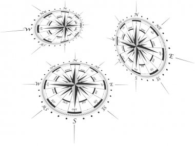 Compass roses in perspective