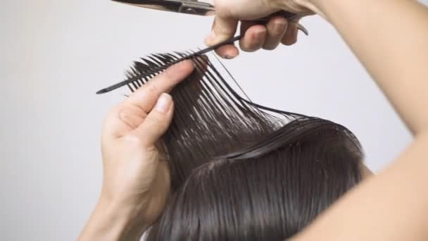 Close-up hairdresser cuts the length of the control strand at the crown using scissors and a comb