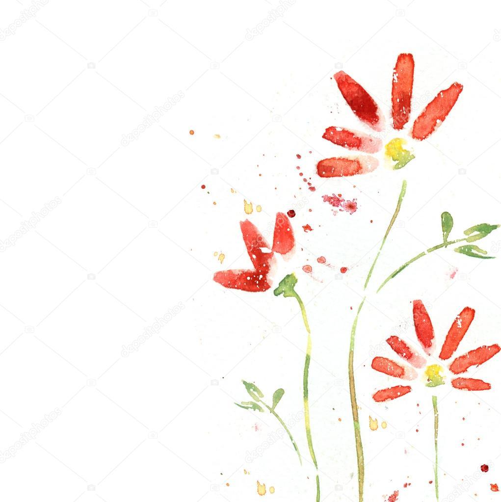 Fiori Rosso Bella Estate Illustrazione Ad Acquerello Sfondo