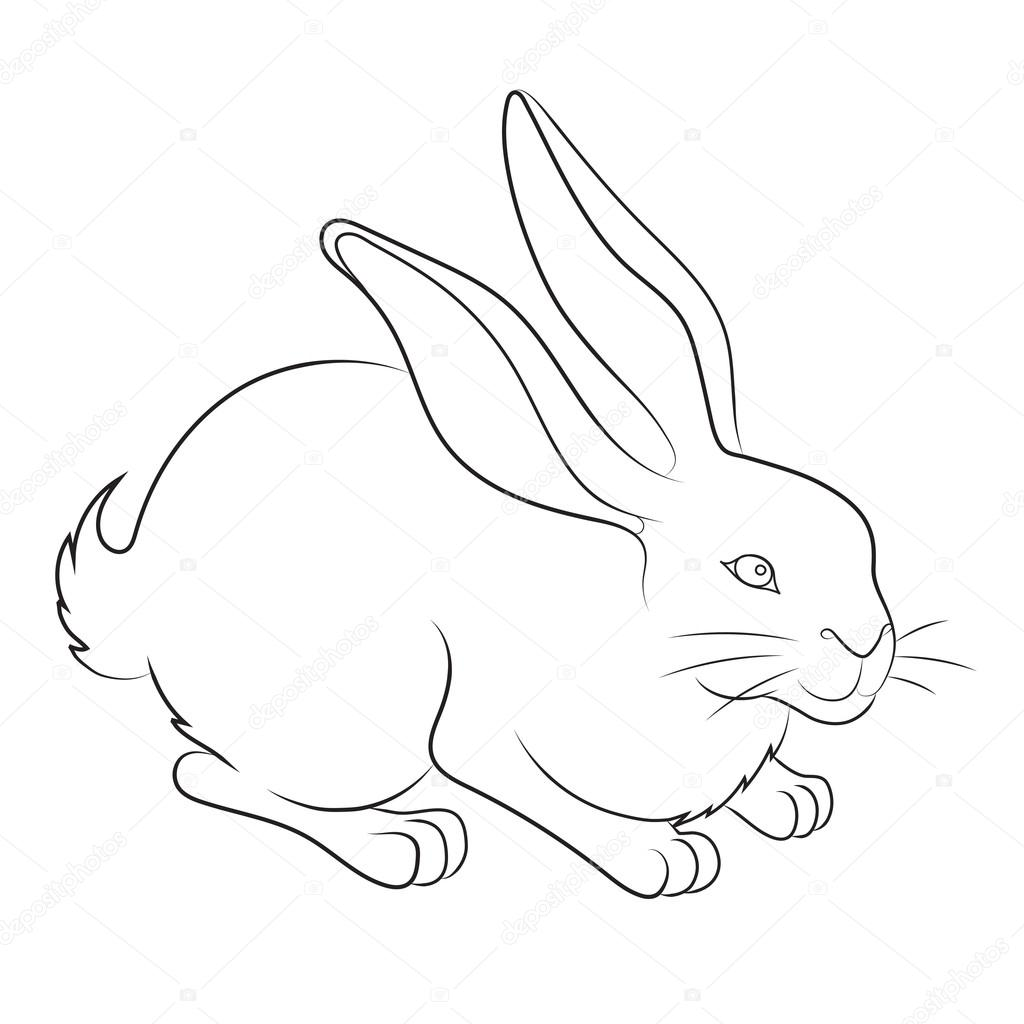 Image dun lapin de paques — 1